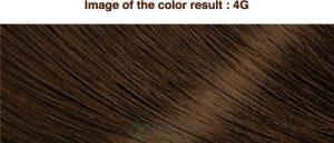Mã màu ThuốcMã màu Thuốc nhuộm tóc Bigen Cream Tone thảo dược Nhật Bản 4g