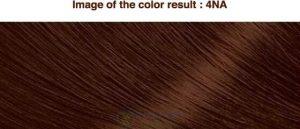 Mã màu Thuốc nhuộm tóc Bigen Cream Tone thảo dược Nhật Bản 4na