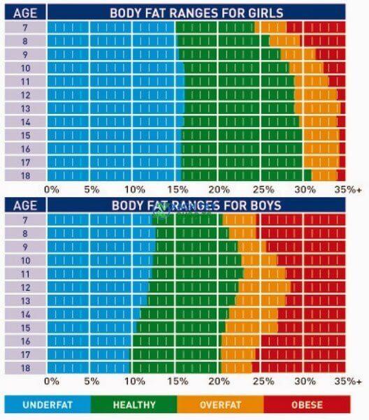 Bảng so sánh chỉ số BFP - tỷ lệ mỡ cho trẻ em